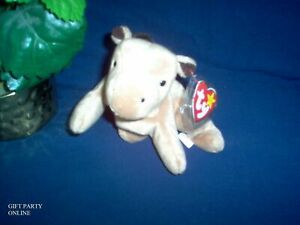 TY Beanie Baby Plush DERBY Horse NO star yarn mane  stuffed collectible BUY NOW