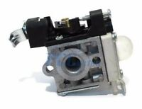 Carburetor Carb Fits Es250 Pb250 Zama Rb-k106 K106 Echo A021003660 H Gca60