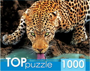 "Puzzles 1000 pieces 68.5*48.5cm ""Beautiful leopard"". Red Cat ГИТП1000-2146."