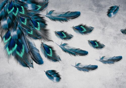 Vlies-Tapeten Wandbild Fototapete Pfau Feder Muster Fototapeten Motivtapeten