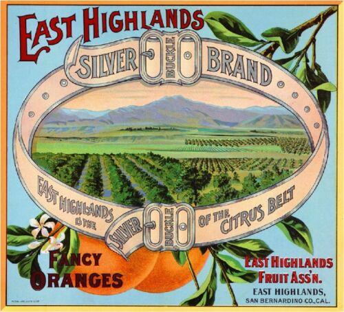 East Highlands San Bernardino Silver Buckle #3 Orange Fruit Crate Label Print