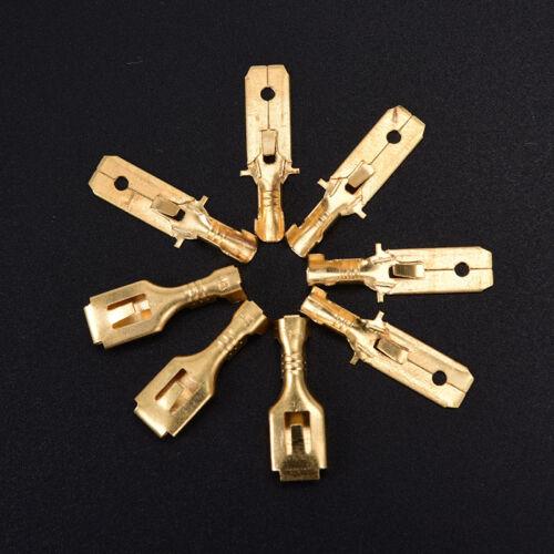 6,3 mm 4-poliger Kfz-Elektrokabelstecker Stecker BuYLW