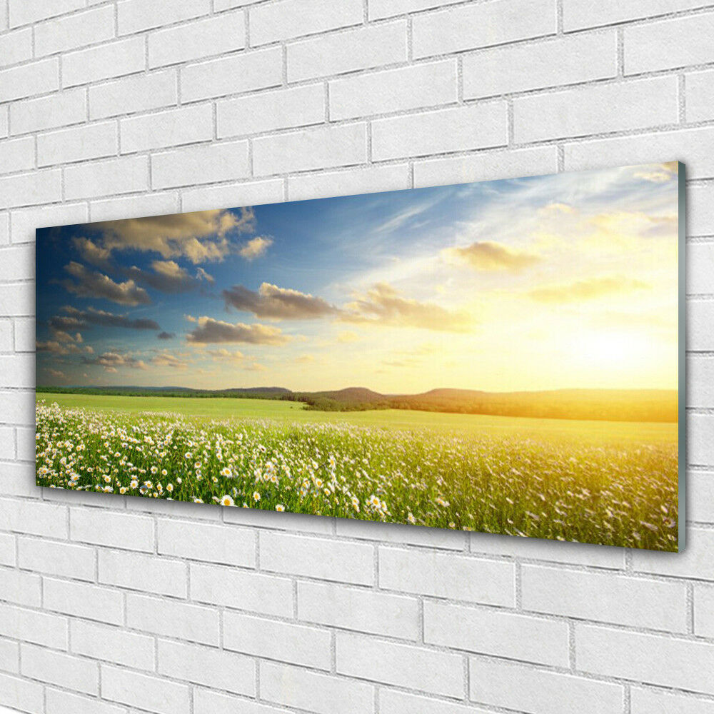 Tableau murale Impression sous verre 125x50 Paysage Fleurs Prairie