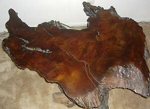 Antique Old Growth Redwood Burl Wood Coffee Table Collectible