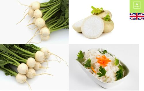 Sow Now UK Seller 500 Seeds Turnip All Year Round Winter Vegetables