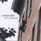 Livin' in a Ball Factory * by Carolynn Black (CD, Feb-2005, WonderCat Music)