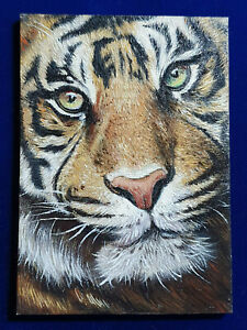 ACEO-Original-Painting-David-Coalburn-Tiger-AWESOME-2-5x3-5-in