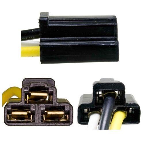 DIESEL Airtex 1P1010 Horn Relay Connector-VIN N