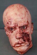 Life Size Zombie Head - Halloween Prop & Decoration - The Walking Dead Corpse