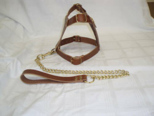 STAFFY BROWN PADDED PUPPY LEATHER DOG HARNESS LEAD BRAND NEW