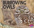 Burrowing Owls by Melissa Hill (Hardback, 2015)