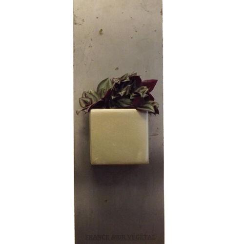 Cache Pot Magnétique Carré Doré 7x7x6,5cm cache-pot magnets aimanté plantes