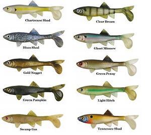 Berkley-Havoc-Gulp-Sick-Fish-Jr-Papa-Soft-Plastics-Fishing-Lures-Powerbait-Bream