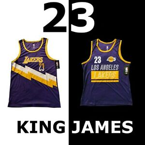 LEBRON-JAMES-034-23-034-NBA-JERSEY-PURPLE-GOLD-LOS-ANGELES-LAKERS-VXM7843F-VXM1283S-SZ