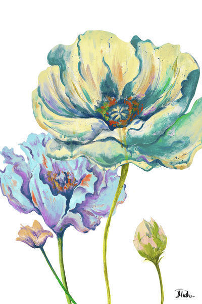 Patricia Pinto Fresh ColGoldt Poppies II Keilrahmen-Bild Leinwand Mohn-Blaume bunt
