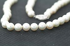 6.5-7mm Genuine Cultured Freshwater White Pearl 14K WHITE GOLD Necklace 18 inch