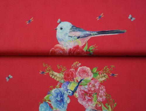 Baumwoll-Jersey Stenzo Vögel Vogel Schmetterling rosarot bunt 0,7 m x 150 cm