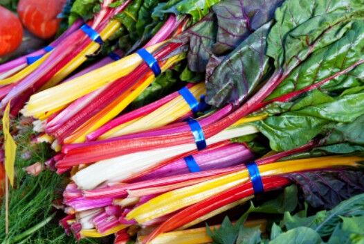 SILVERBEET 'Rainbow' 120 seeds CHARD spinach vegetable garden NON GMO winter