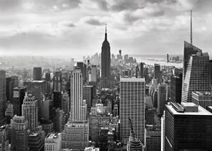Detalles De De Pared Gigante Mural Ciudad De Nueva York Wallpapers 368x254cm Black White Cityscape Arte Ver Título Original