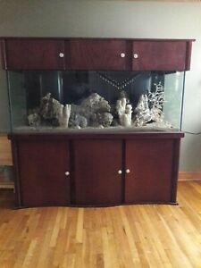 225-gallon-Salt-water-aquarium-with-canopy-and-stand-plus-extra-equipment