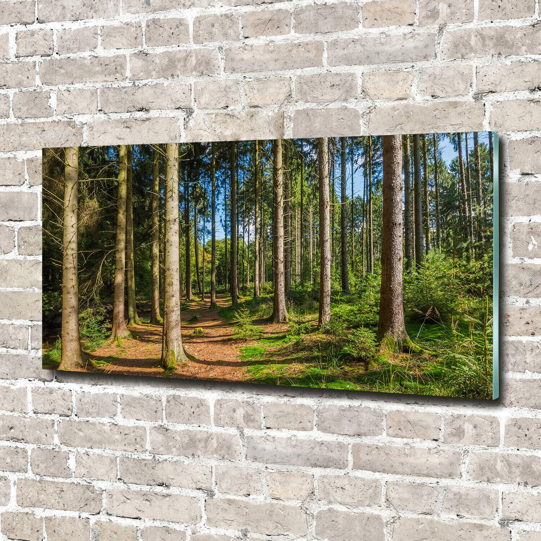 Acrylglas-Bild Wandbilder Druck 140x70 Deko Landschaften Wald Panorama