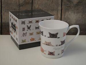ashdene becher tasse peeping felines katzen fine bone china porzellan ebay. Black Bedroom Furniture Sets. Home Design Ideas