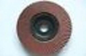 Juste 115mm 11.4cm 60 X Graines Rabat Disque RafraîChissant Et Enrichissant La Salive