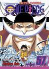 One Piece by Eiichiro Oda (Paperback, 2011)