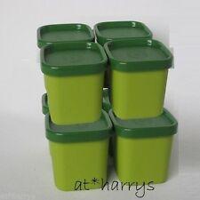 Tupperware MicroGourmet Förmchen (8) Dampfwunder Grün
