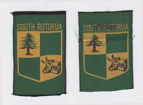 SCOUTS OF NEW ZEALAND NZ BAY OF PLENTY SOUTH ROTORUA SCOUT BADGE 2 VAR