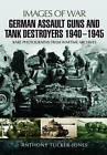 German Assault Guns and Tank Destroyers 1940 - 1945: Rare Photographs from Wartime Archives by Anthony Tucker-Jones (Paperback, 2016)