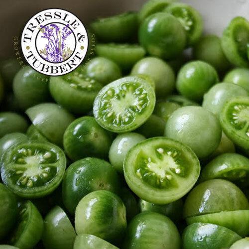 Rare Cherry Green Tomato  10 seeds  UK SELLER