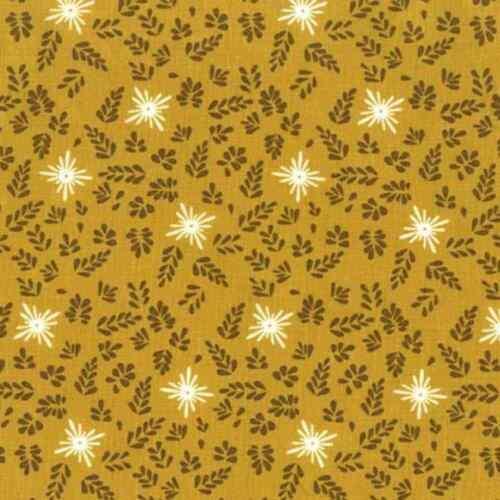 Tissu de Coton Fat Quarter Michael Miller-House of hoppington-cailco Toss...