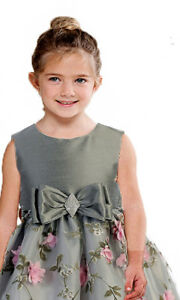 Posh-Silver-Pink-Floral-Embroidered-Flower-Girl-Holiday-Dress-Crayon-Kids-USA