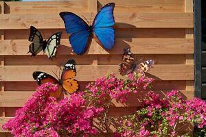 Détails sur Papillon Métal Mur Déco 4 Modèles Coloré jardin décoration  murale papillon- afficher le titre d\'origine