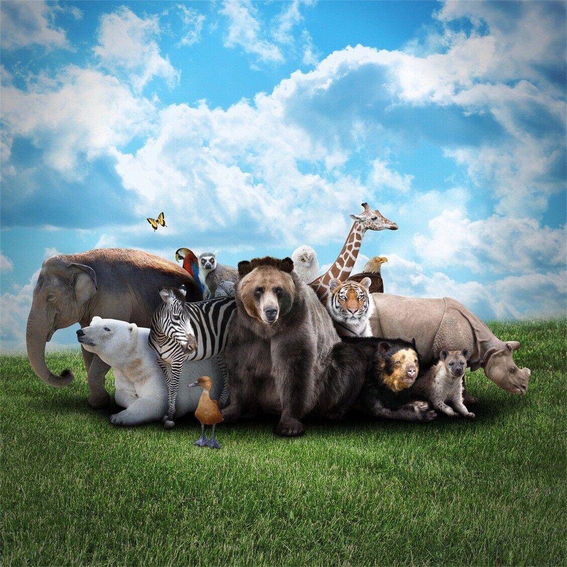 3D Himmel Prärie Tiere Tiere Tiere 8798 Tapete Wandgemälde Tapeten Bild Familie DE Kyra | Stil  | Perfekt In Verarbeitung  | Haltbar  c070d4