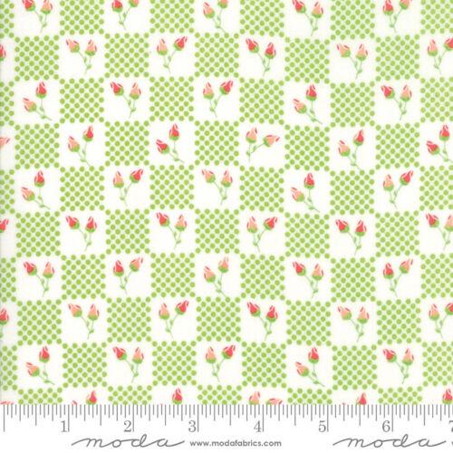Leaf by 1//2 yard 29024 16 MODA Fabric ~ LULU LANE ~ by Corey Yoder