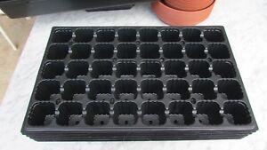 Lote-5-x-Bandeja-semillero-para-Germinacion-Esquejes-40-Alveolos-50x30cm