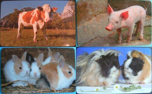 1 Frühstücksbrettchen Tiere Tier Brettchen 23x14cm Brett Hase Hasen Schwein Kühe