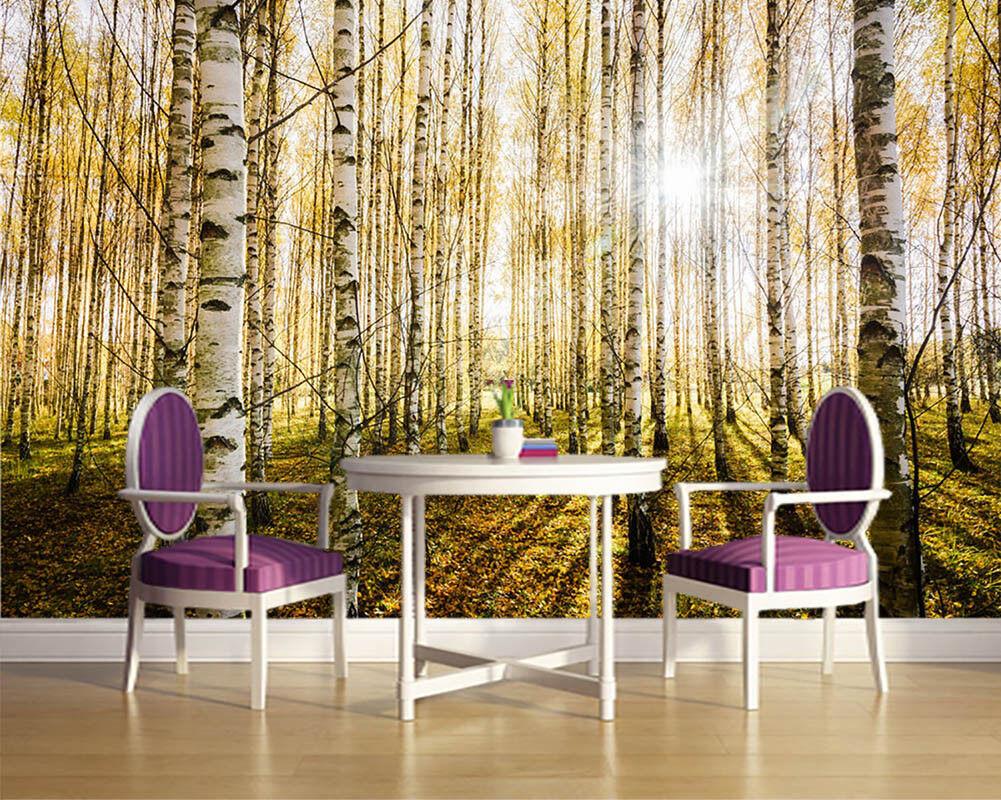 Early Morning Birches 3D Full Wall Mural Photo Wallpaper Print Home Kids Decor