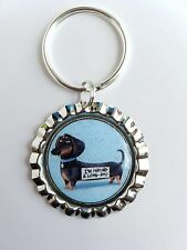 THE SECRET LIFE OF PETS * Buddy * Bottle Cap with Keyring