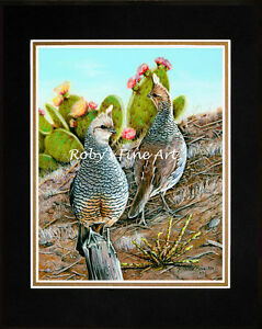 Matted-Scaled-Quail-Art-Print-034-Cottontops-034-8x10-Mat-by-Realism-Artist-Roby-Baer