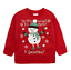 Kids-Boys-Girls-Christmas-Xmas-Novelty-Sweatshirt-Jumper-2-12-Years thumbnail 27