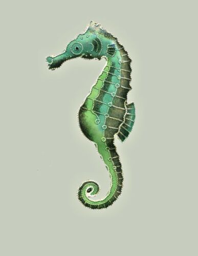 SEAHORSE Green Cloisonne PIN by Bamboo Jewelry STERLING SILVER Enamel Gift Box
