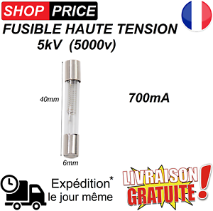 NEUF 700mA Fusible haute tension pour micro-ondes 5KV 0.7A