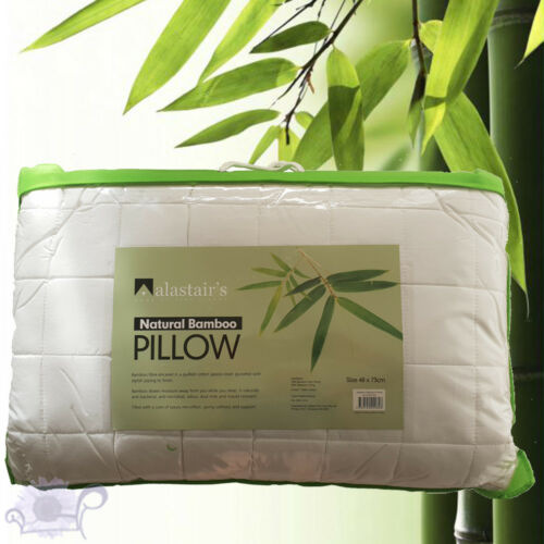 Bamboo Pillow Eco Friendly Natural Fibre by AlastairsStandard Size