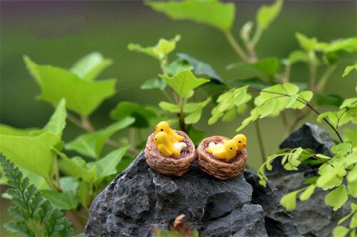 4 Pcs Oriole Vögel Miniaturen Bonsai Garten Rasen Ornament Dekoration Figur DIY