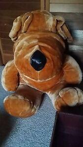Enormous-Stuffed-Dog