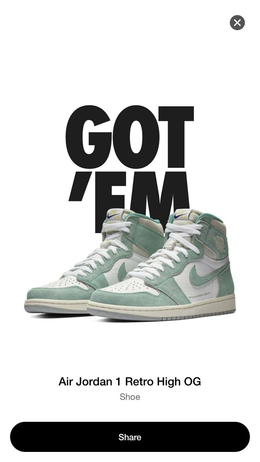 Air Jordan 1 Turbo Green Size 10 CONFIRMED Charlotte Vintage Nike