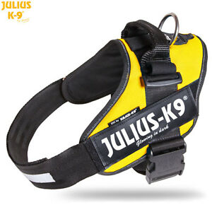 Julius-K9-IDC-Powerharness-Dog-Harness-sun-yellow-NEW